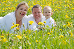 Family Picture in Dandelion field Stock Image