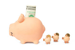 Family of Piggy Banks Royalty Free Stock Photography
