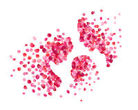 Family of pink rose petals. Vector illustration Royalty Free Stock Photos