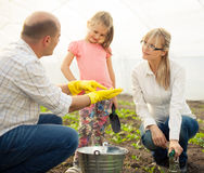 Family planting flowers Stock Images