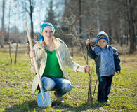 Family planting tree Stock Photo