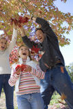 Family playing with autumn leaves in park, pulling on branch, laughing, low angle view stock photography