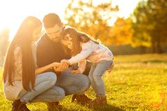 Family playing in autumn park having fun. At sunset.sunset in the park Royalty Free Stock Photos