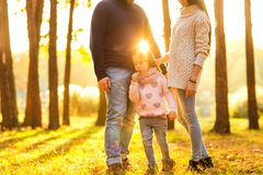 Family playing in autumn park having fun at sunset. Park at sunset of the day Royalty Free Stock Images