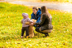 Family playing with daughter and teddy bear Stock Image