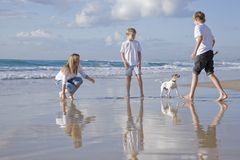 Family playing with dog on the beach Royalty Free Stock Image