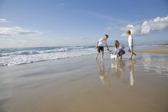 Family playing with dog on the beach Royalty Free Stock Photo