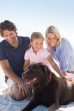 Family playing with dog Royalty Free Stock Photo