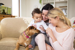 Family playing with dog at home. Same sex female couple sitting with their son and dog on the sofa in their home Royalty Free Stock Photo