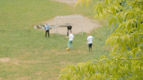 Family playing football in the park. People playing football in the park.Preparing to shoot penalty kicks. View through tree branches. Blurred background stock video footage