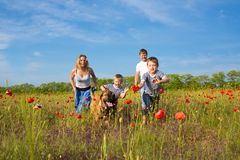 Family playing on the meadow Stock Photography