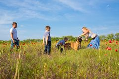 Family playing on the meadow Royalty Free Stock Image