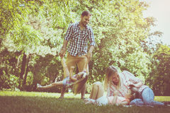 Family playing in the meadow together and enjoying in sum royalty free stock photo