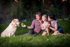Family pllaying with dog stock photo