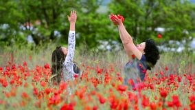 Family in a poppies field stock video footage