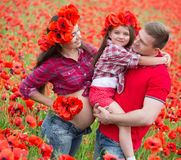 Family on the poppy field Royalty Free Stock Images