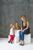 Family portrait with a charming Yorkshire terrier. Stock Photo