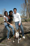 Family Portrait with Dogs. Happy married couple taking pictures with their dogs in the park royalty free stock photos