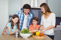 Family preparing vegetable salad. In kitchen Royalty Free Stock Photography