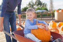 Family at pumpkin patch. Cheerful little boy sitting in the cart with huge pumpkin, having fun with his father at pumpkin patch Stock Photography