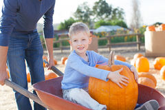 Family at pumpkin patch. Father holding cart with his little son sitting in it and holding huge pumpkin enjoying pumpkin patch at autumn time, american tradition Royalty Free Stock Image