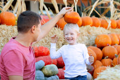 Family at pumpkin patch. Smiling excited boy and his father at the pumpkin patch having fun together Stock Photo