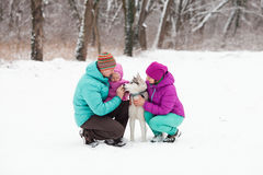 The family with the puppy Royalty Free Stock Image