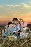 Family reading  book   in field Royalty Free Stock Image