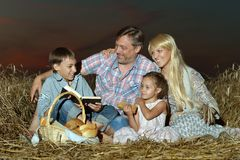Family reading  book   in field Royalty Free Stock Images