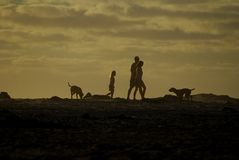 Family recreation. Family walking down beach with dogs, Noordhoek, Cape Town Stock Photos