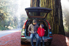 Family in redwood forest Stock Photos