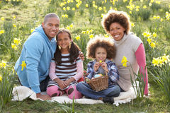 Family Relaxing In Field Of Spring Daffodils royalty free stock image