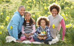 Family Relaxing In Field Of Spring Daffodils. Smiling Stock Photos