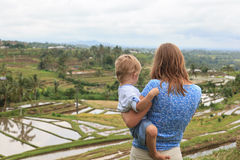 Family in rice fields Stock Photo