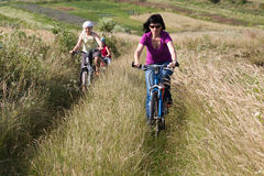 Family riding a bicycles in the meadow Stock Image