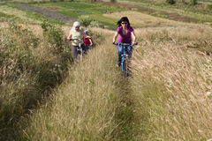 Family riding a bicycles in the meadow Stock Images