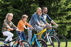 Family riding bicycles while spending time together in summer park Stock Photography