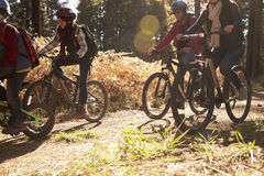 Family riding bikes on a forest path, crop shot Royalty Free Stock Image