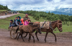 A family riding in carriage Royalty Free Stock Photos