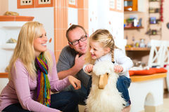 Family rocking rocker horse Stock Image