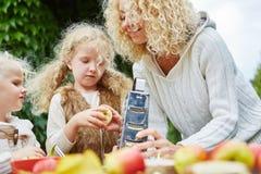 Family rub apples for a cake Stock Photos