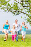 Family runing over field or lawn in summer Stock Photos