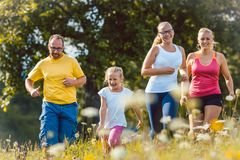 Family running on a meadow for sport. Family running on a meadow with flowers for sport Royalty Free Stock Image