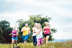 Family running on a meadow for sport royalty free stock photography