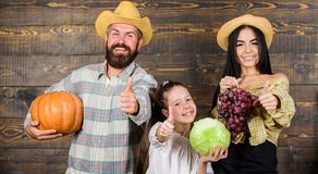 Family rustic style farmers market with fall harvest. Harvest festival concept. Family farmers with harvest wooden. Background. Parents and daughter celebrate royalty free stock photography