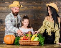 Family rustic style farmers market with fall harvest. Harvest festival concept. Family farmers with harvest wooden. Background. Parents and daughter celebrate stock image