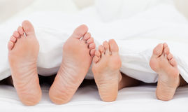 Family's feet in the bed Stock Photography