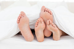 Family's feet in the bed Stock Images
