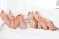 Family's feet in the bed royalty free stock photos