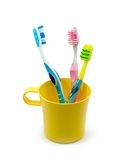 Family's tooth-brushes stock photography